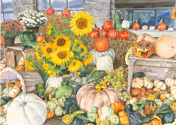 Pumpkins, Gourds and Sunflowers